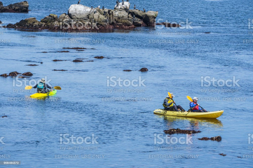Kayaks in Monterey Bay stock photo