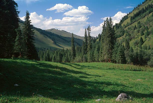 Kazakhstan. Tien Shan mountains. stock photo