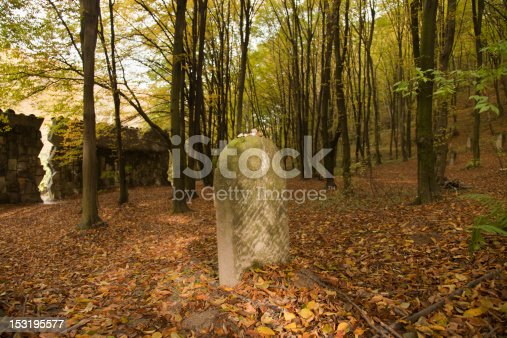 jude cementery inkazimierz on the midle of the forest, a beatuty and mistry photo and place in Poland