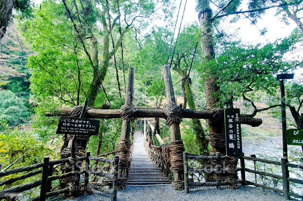 Kazurabashi Vine Bridge stock photo