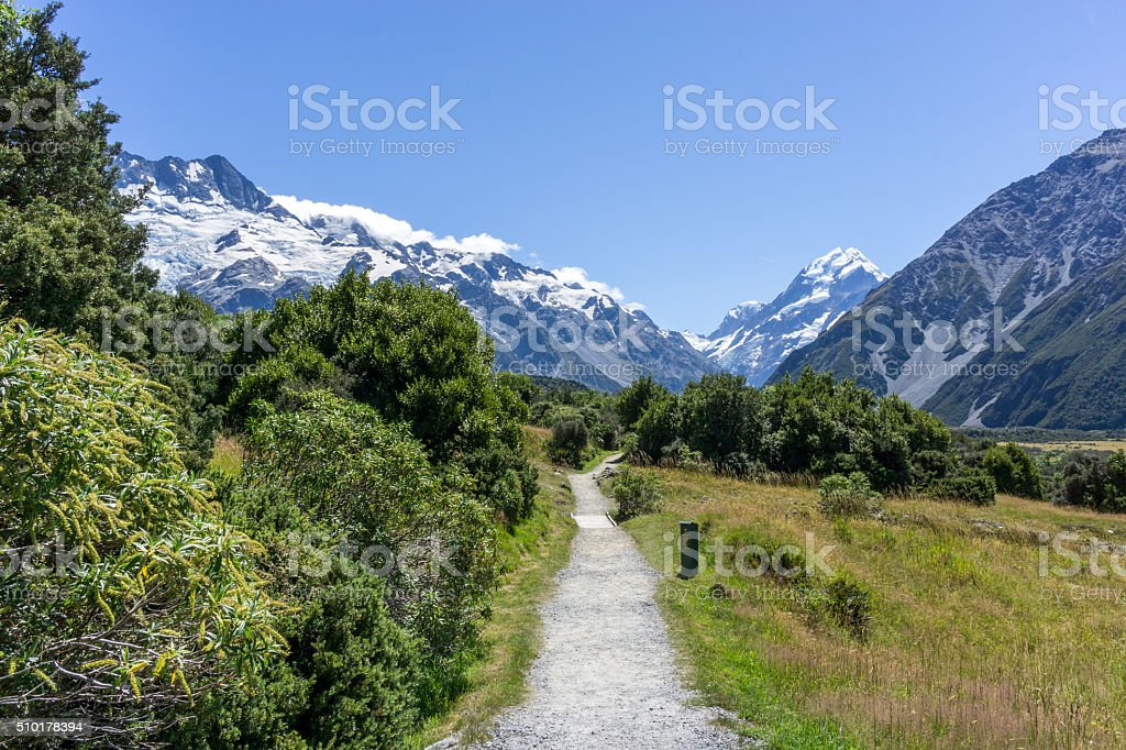 Kea Point Track stock photo