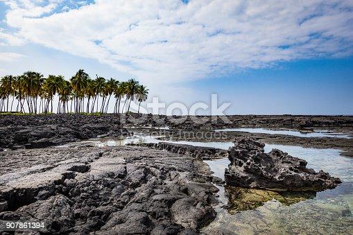 istock kealakekua bay, kona side, big island, hawaii islands 907861394