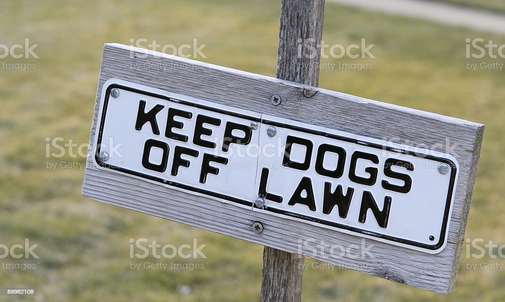 Keep Dogs Off Lawn stock photo