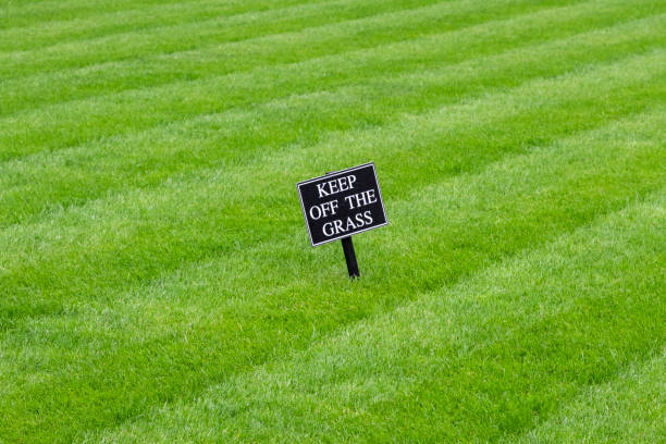 Keep off the grass sign on a rolled cut lawn stock photo