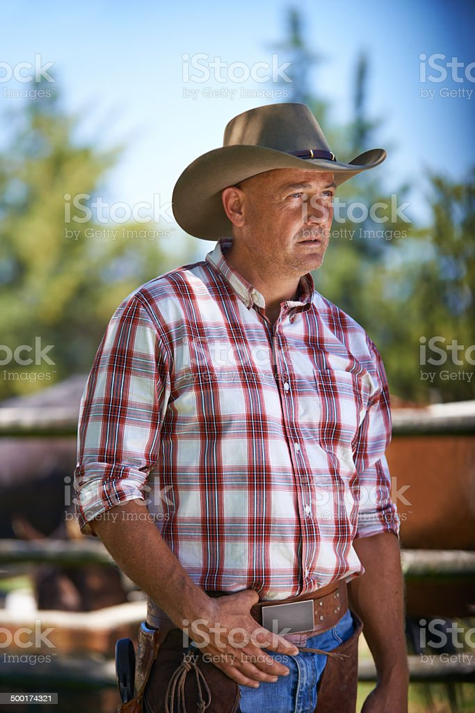 Keeping a close watch over his ranch royalty-free stock photo