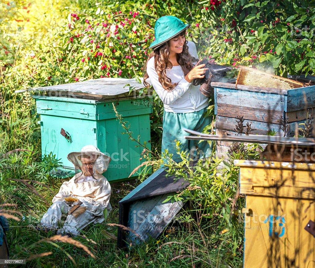 Keeping bees in old apiary stock photo