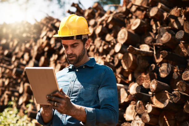 Keeping his eye on the lumber shipments Cropped shot of a lumberjack using his tablet while standing in front of a pile of wood forester stock pictures, royalty-free photos & images