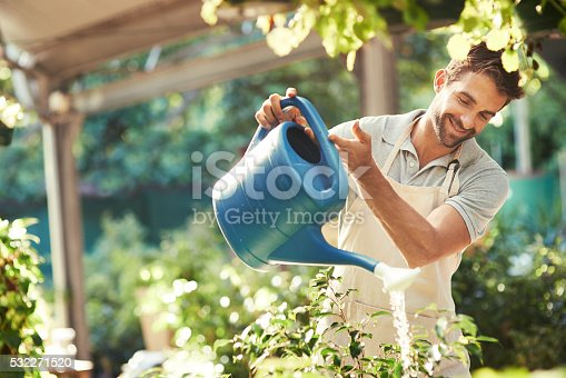 istock Keeping his plants hydrated and refreshed 532271520