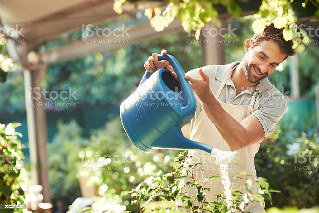 Keeping his plants hydrated and refreshed stock photo