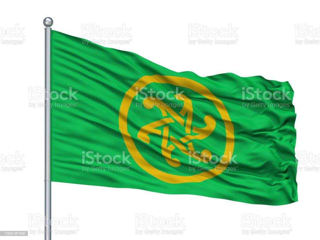 Keltia Flag On Flagpole, Isolated On White stock photo