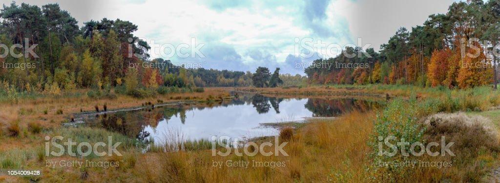 Kempen bos en klein bos meer in Noord-Brabant, Nederland foto