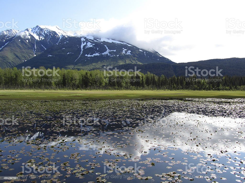 Kenai Fjords National Park stock photo