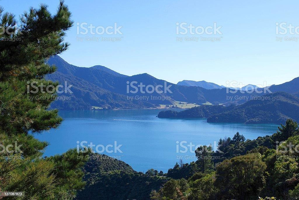 Kenepuru Sound, Marlborough, NZ royalty-free stock photo