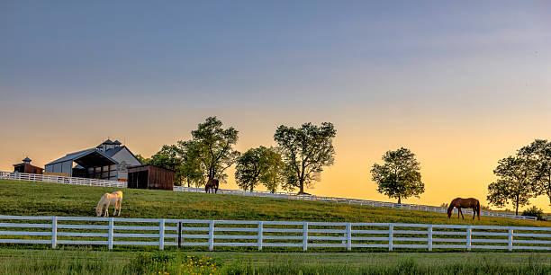 Kentucky farm at sunrise picture id537861868?b=1&k=6&m=537861868&s=612x612&w=0&h=fbf0x7zqil6jyoedwm0est3ddiwnvvkdidwbx8hyhio=