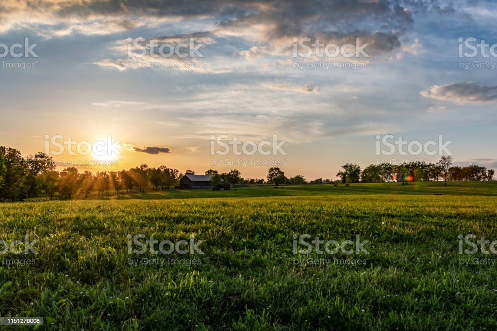 Kentucky at çiftliği manzara - Royalty-free ABD Stok görsel