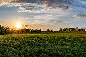 istock Kentucky horse farm landscape 1151276008