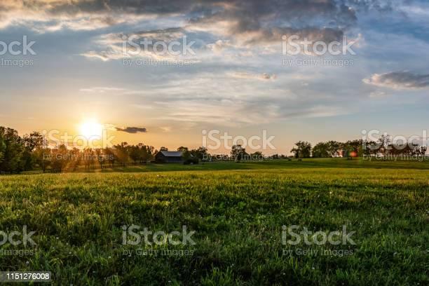 Photo of Kentucky horse farm landscape