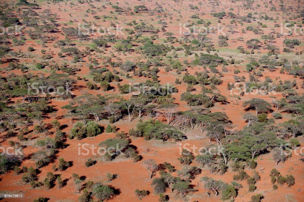 Kenya from the air 免版稅 stock photo
