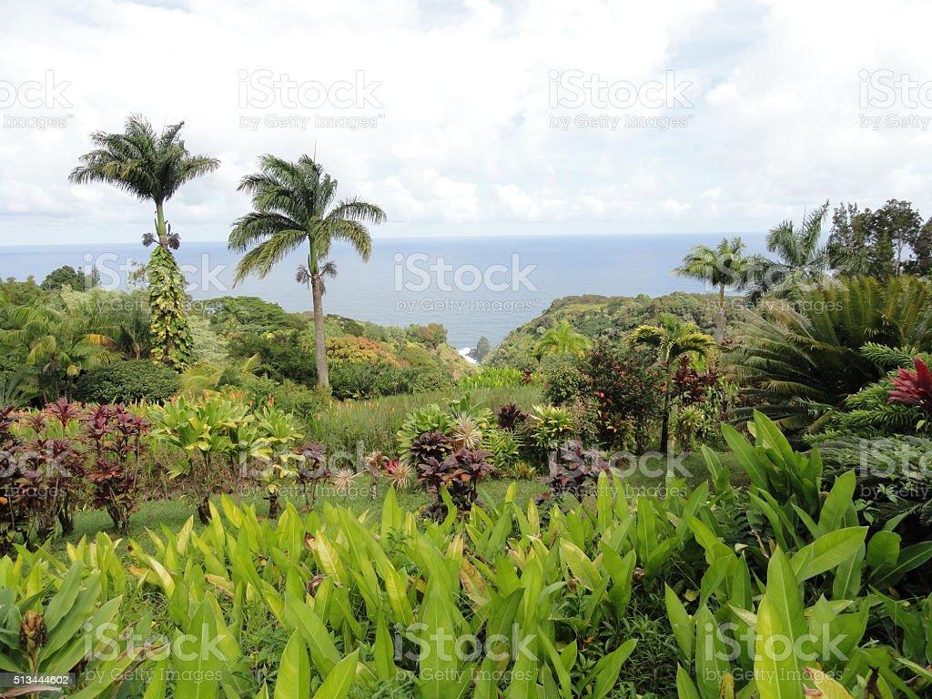 Keopuka Rock overlook in tropical Garden of Eden, Maui, Hawaii stock photo