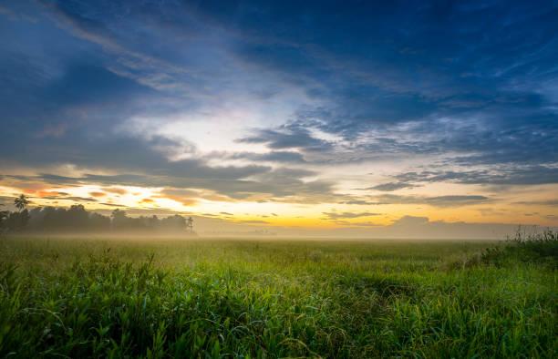 Kerala sunrise, India stock photo