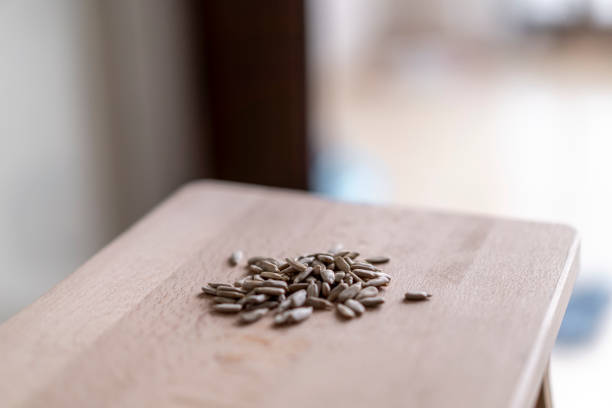 kernels of seeds group on the wooden table stock photo