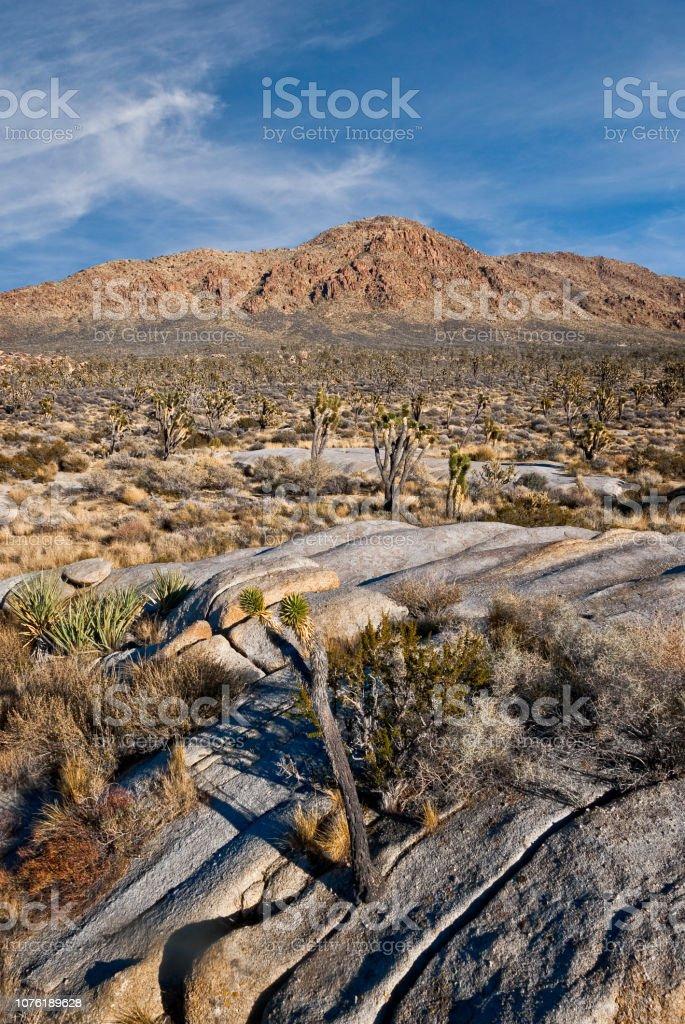 Kessler Peak in the Mojave Desert stock photo