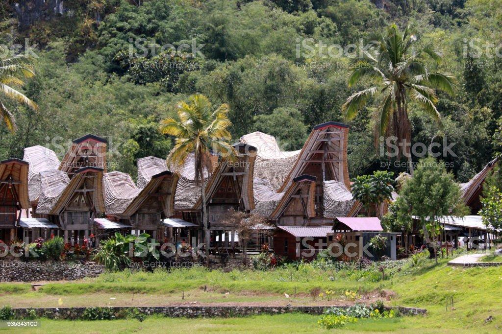 Ke'te Ke'Su, Toraja, Sulawesi stock photo