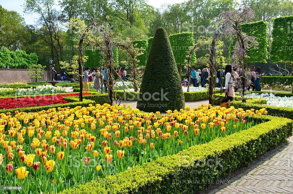 Keukenhof giardino colorato fiori e fiori di primavera olandese