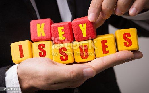 istock Key Issues 687238988