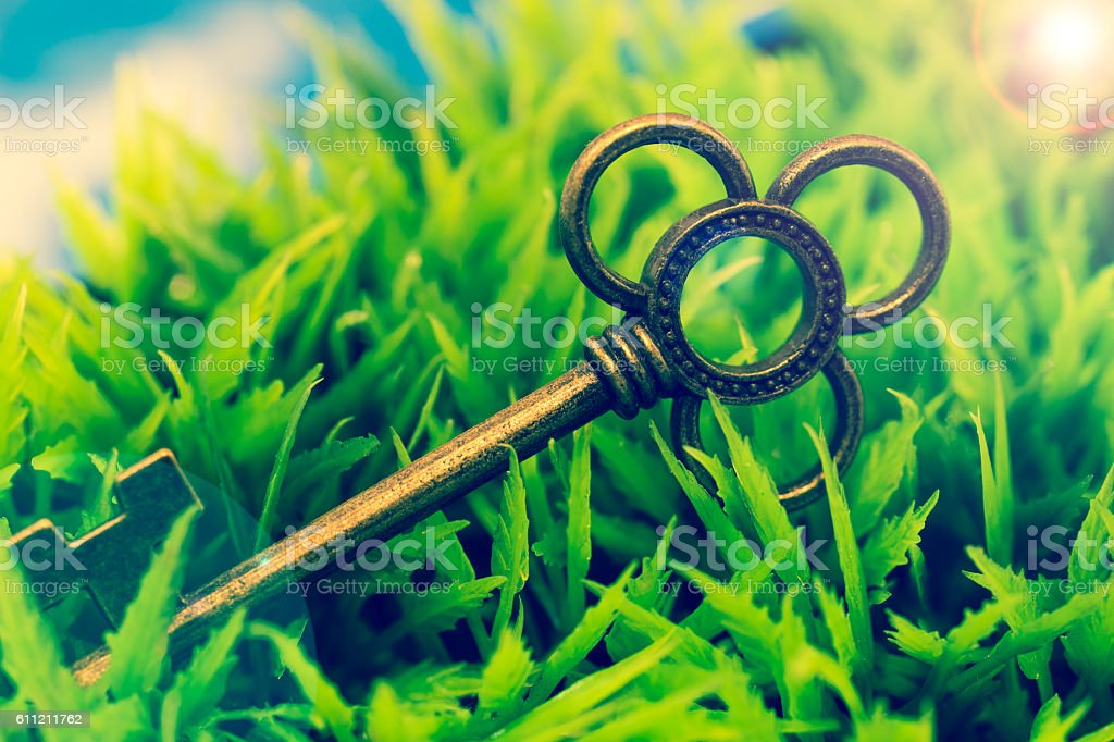 Key on green grass, with lens flare stock photo