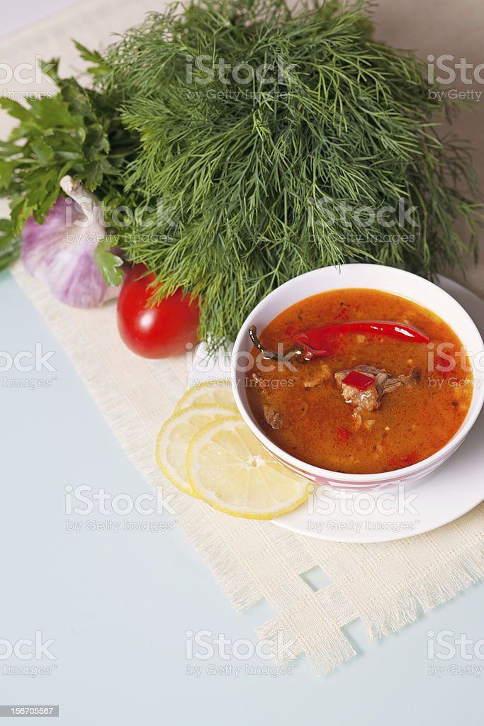 Kharcho soup served with vegetables and green royalty-free stock photo