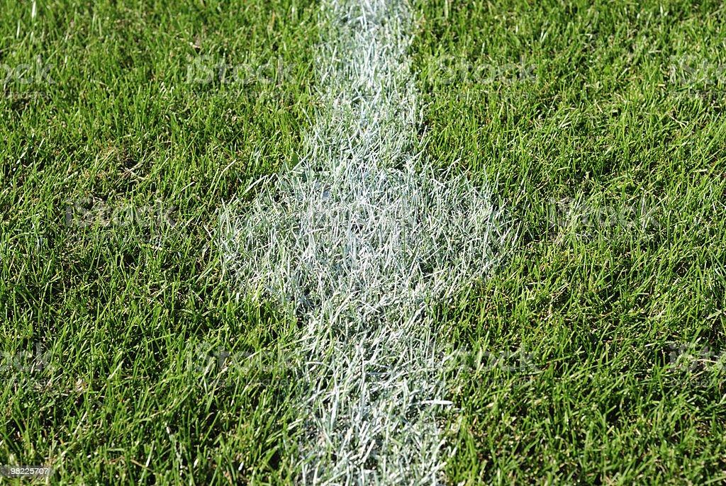 Kick off spot on a soccer field royalty-free stock photo