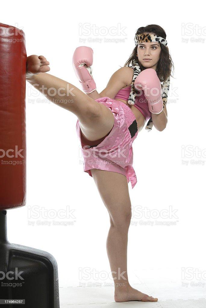Kickboxing Tiger stock photo
