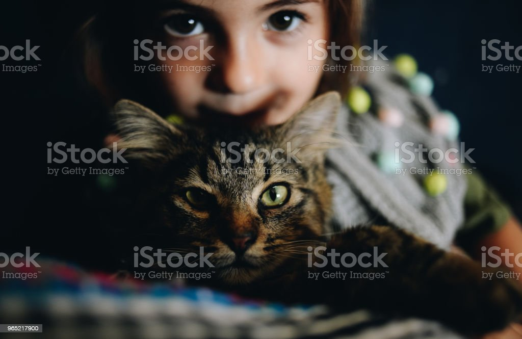 Kid and Cat royalty-free stock photo