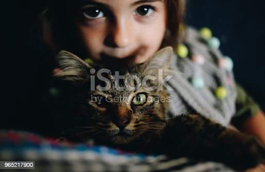 Kid And Cat Stock Photo & More Pictures of Affectionate