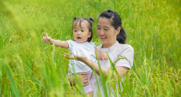kid and mother in farm stock photo
