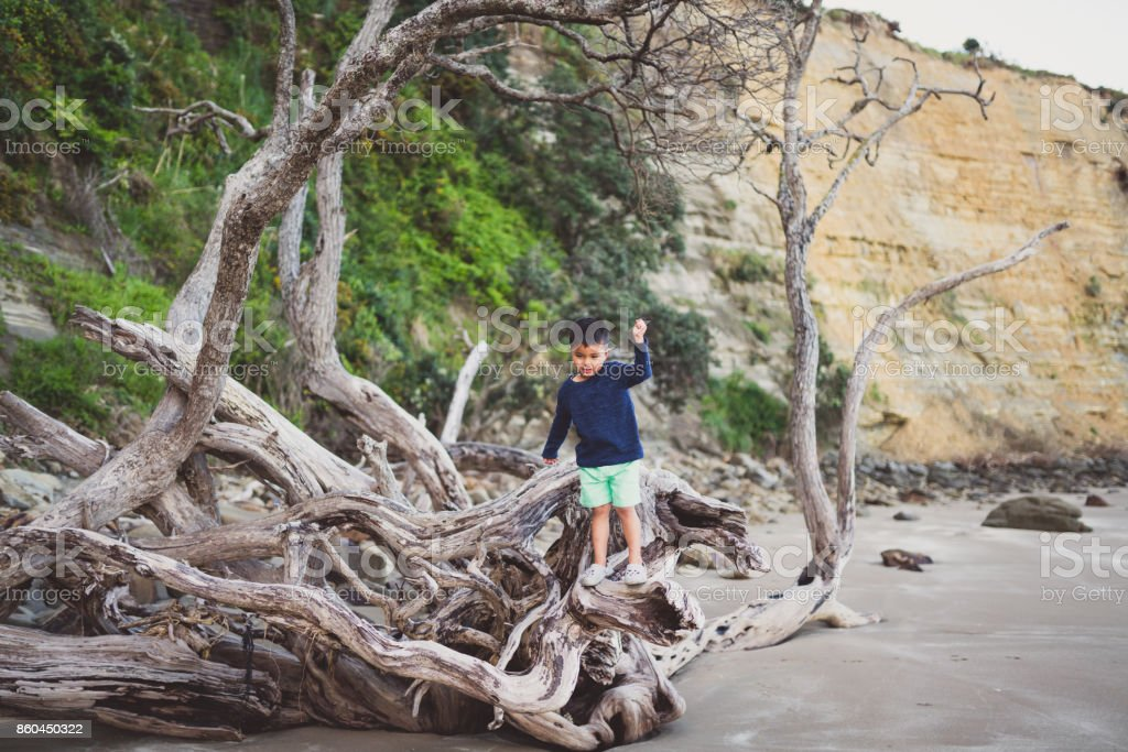 Kid balancing up while walking on log at beach. stock photo