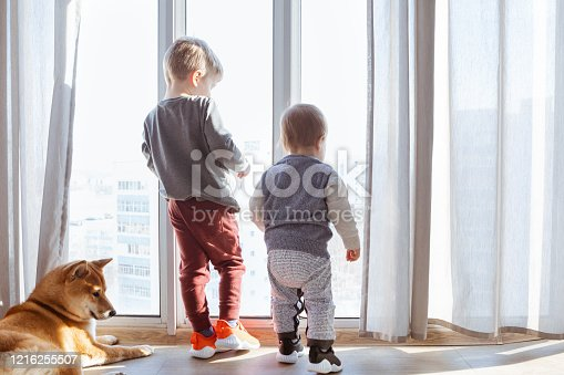Kid brothers stay at home with their dog and looking through the window. Self-isolation and coronavirus epidemic.