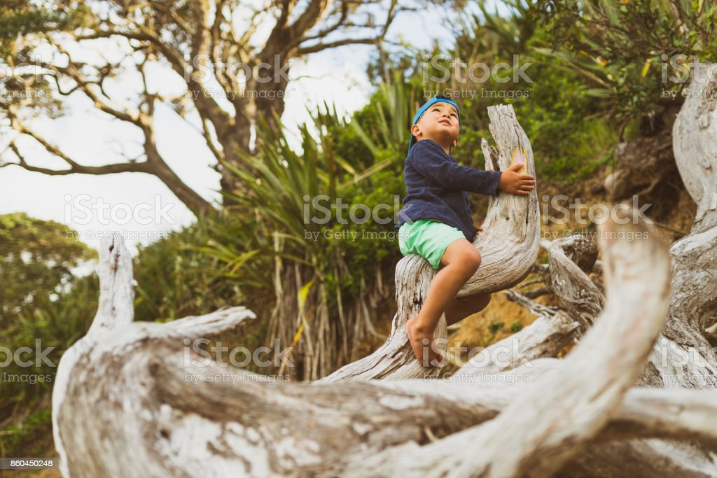 Kid climbing on a washed up wood on beach. stock photo