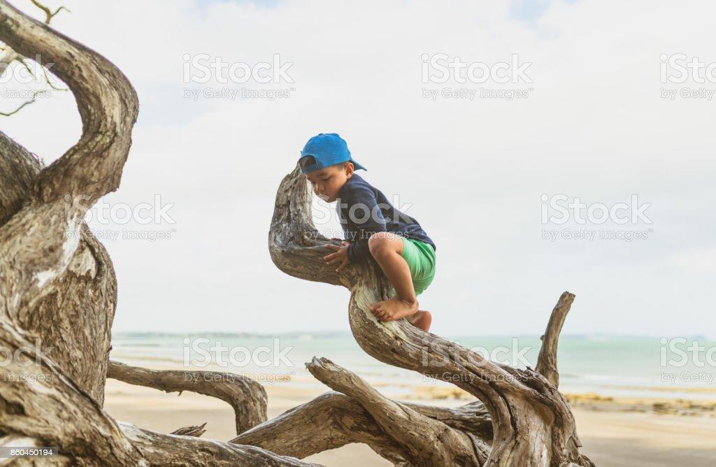 Kid climbing on log outdoor on beach. stock photo