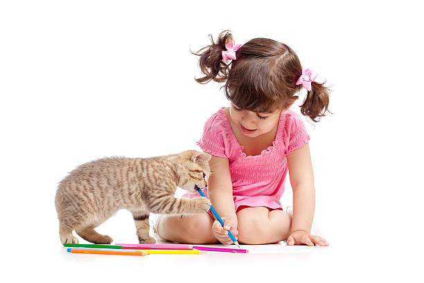 Kid draws with pencils while cat chews pencil  stock photo
