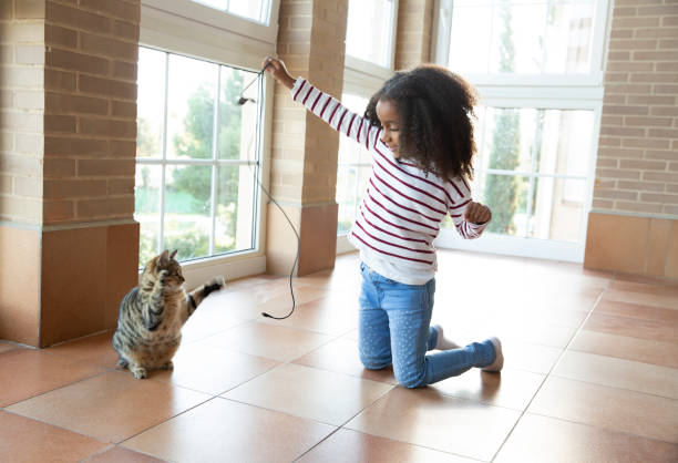 Kid girl playing with cat holding cable picture id1175329855?b=1&k=6&m=1175329855&s=612x612&w=0&h=sphlbmtngeknjd39fnktjpzervx5pp8b3bhfrlgwini=