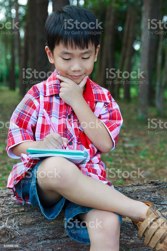 Kid happy and smiling on wooden log at park. Outdoors. stock photo