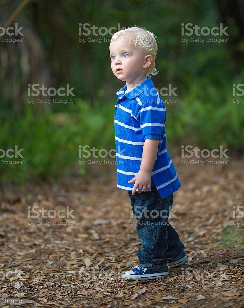 kid having fun on a park. stock photo