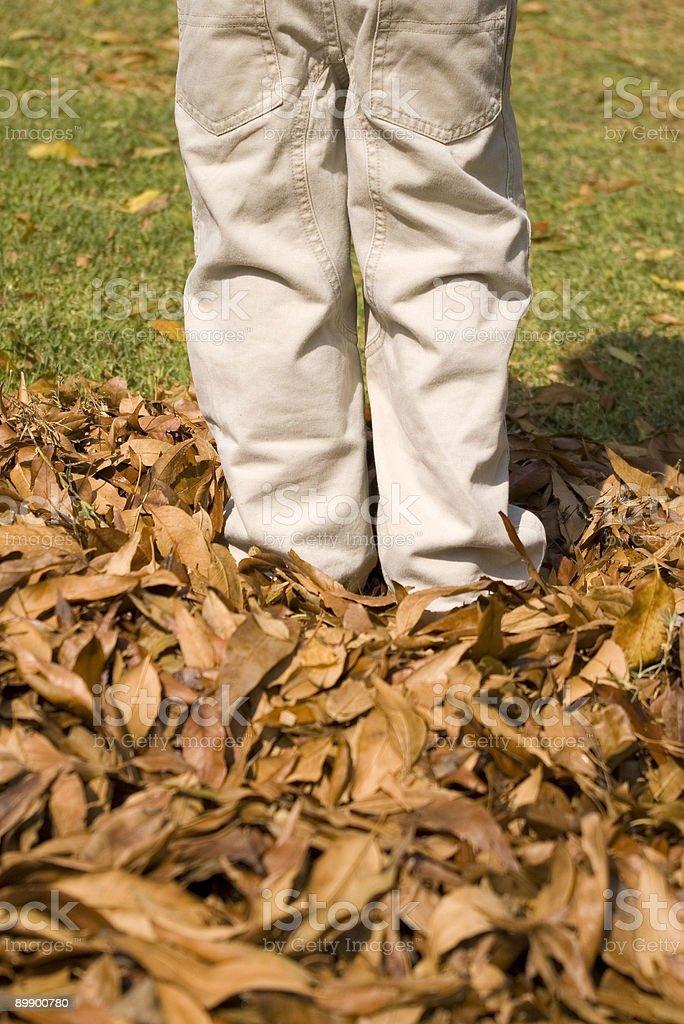 Niño en otoño foto de stock libre de derechos