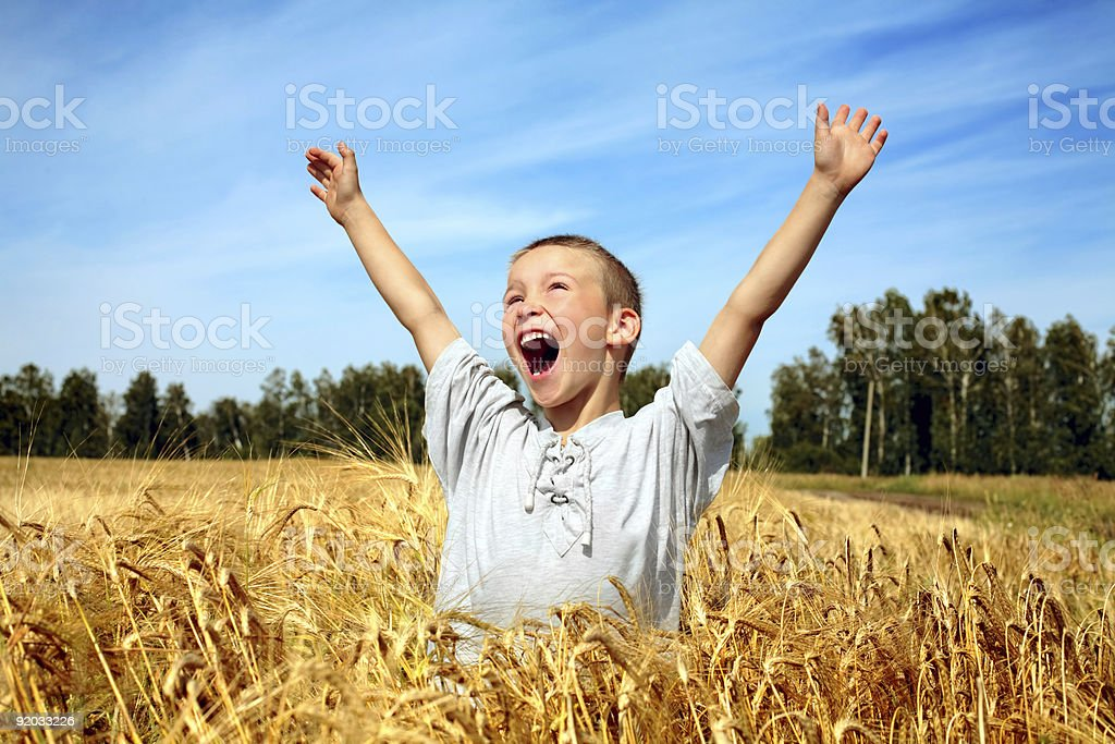 kid in wheat field royalty-free stock photo