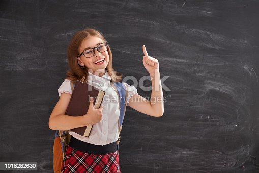 istock Kid is learning in class 1018282630