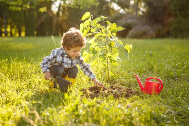 kid taking care of tree in garden - piantare foto e immagini stock