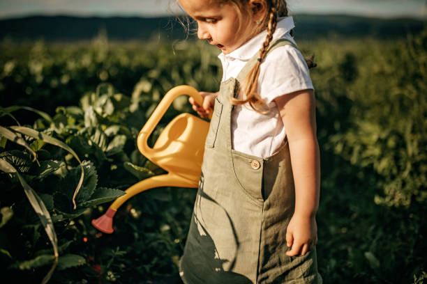 Kid watering plant stock photo