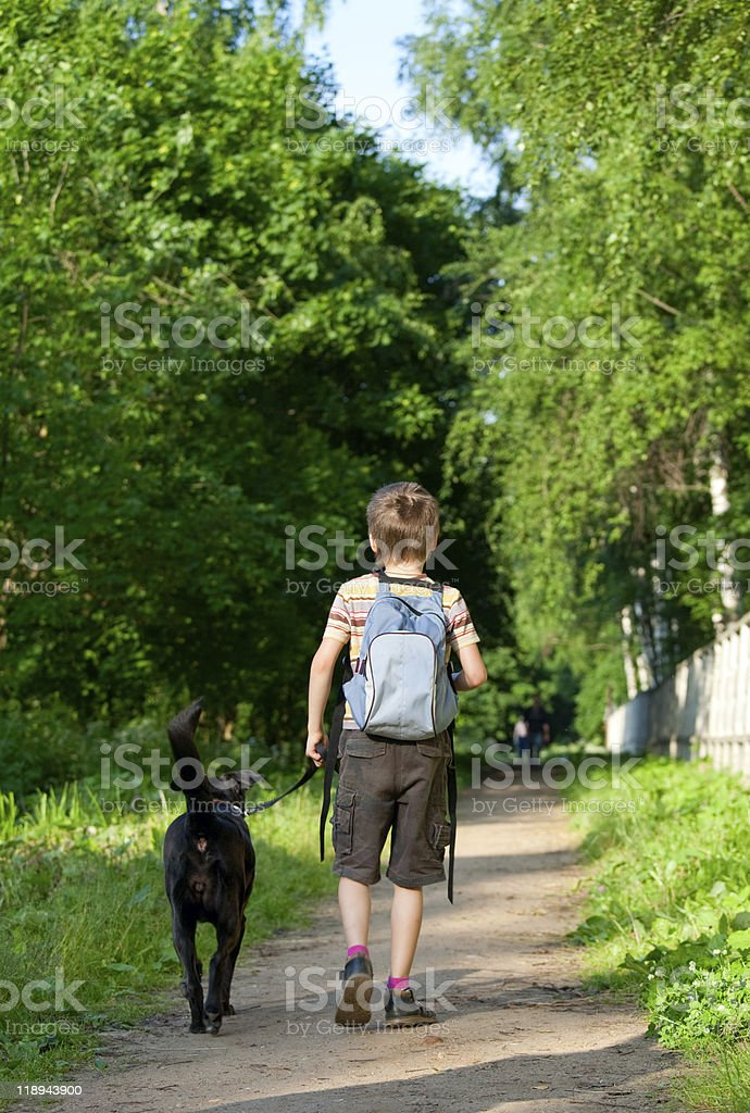 Kid with a dog royalty-free stock photo